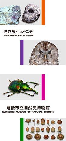 倉敷市立自然史博物館/リーフレット -自然界へようこそ-